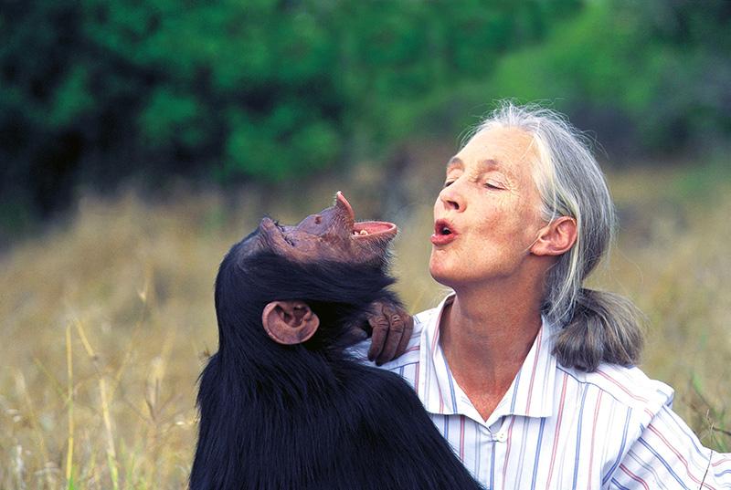 Dr.-Jane-Goodall-Australia