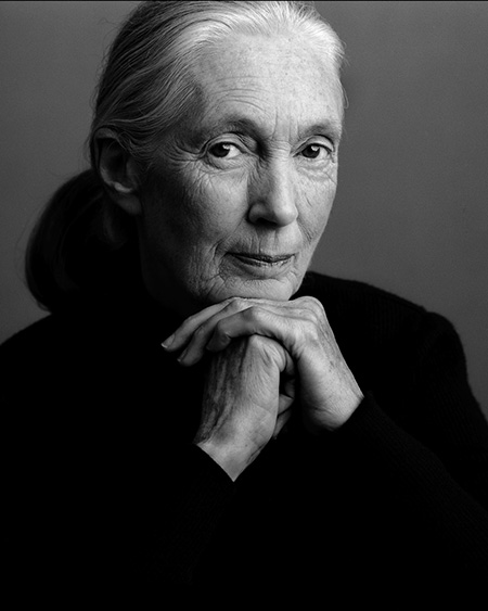 Dr.-Jane-Goodall